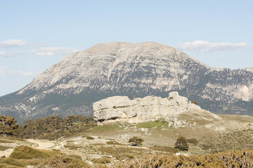 Cerca de Castril - La Sagra