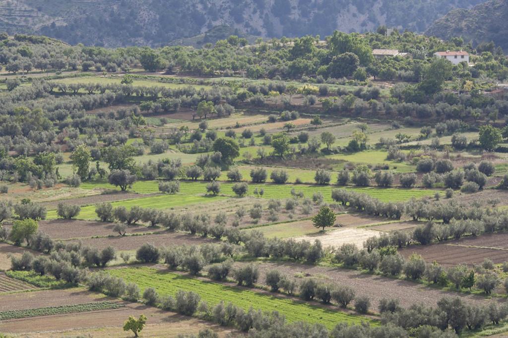 Casas Rurales Castril - llano de Tubos