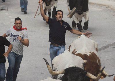 casasruralescastril-toros-de-Castril-20