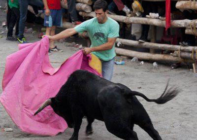 casasruralescastril-toros-de-Castril-3