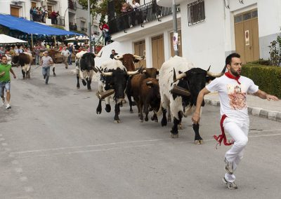 casasruralescastril-toros-de-Castril1