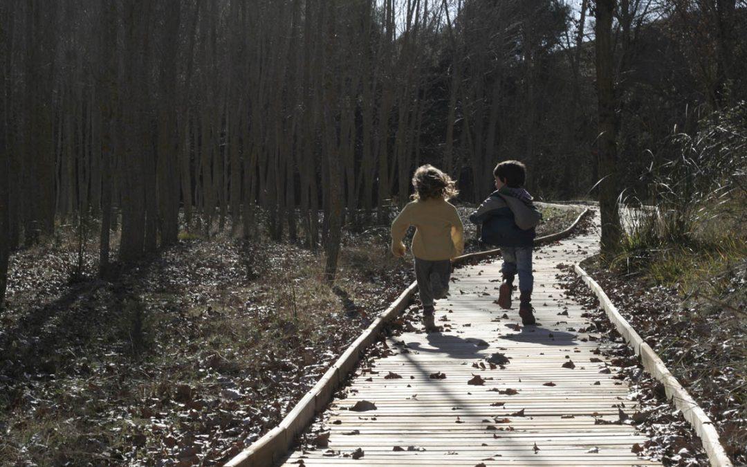 Sendero Accesible del Puente de Lezar, Parque Natural de Castril